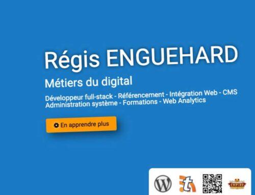 Le blog de Régis ENGUEHARD : le maître du Web