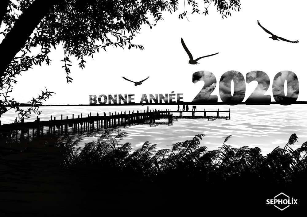 Bonne Année 2020 - Sepholix Web designer Freelance- conception graphique